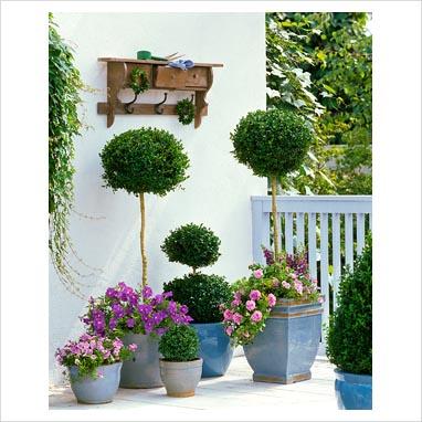 Peque os jardines parte i jardin decocasa for Decoracion de patios pequenos de casas